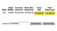 place your bid - picture of bidding process